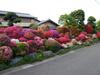 Apr_28_2008_01