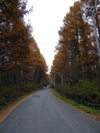 Nov_05_2007_05