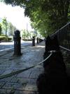 May_06_2008_01