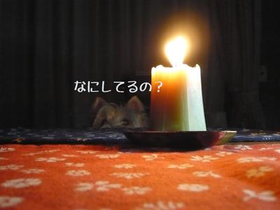 Jun_22_2008_02