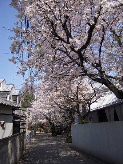 Apr_06_2009_01