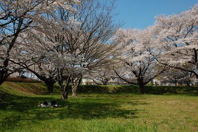 Apr_07_2009_01