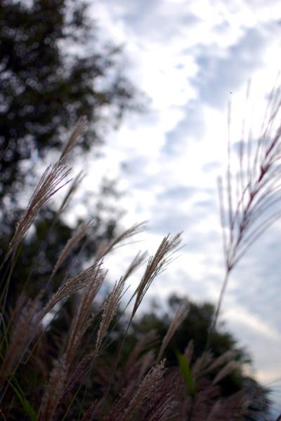 Sep_09_2009_01